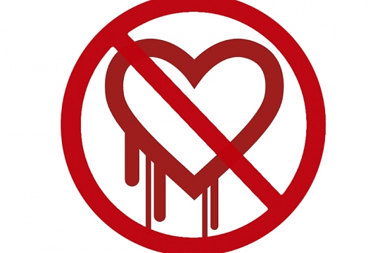 BUG, Heartbleed, dati personali, CVE-2014-0160